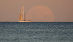 A yacht sails past as the moon rises in Sydney Wednesday, May 26, 2021. A total lunar eclipse, also known as a Super Blood Moon, will take place later tonight as the moon appears slightly reddish-orange in colour. (AP Photo/Mark Baker)