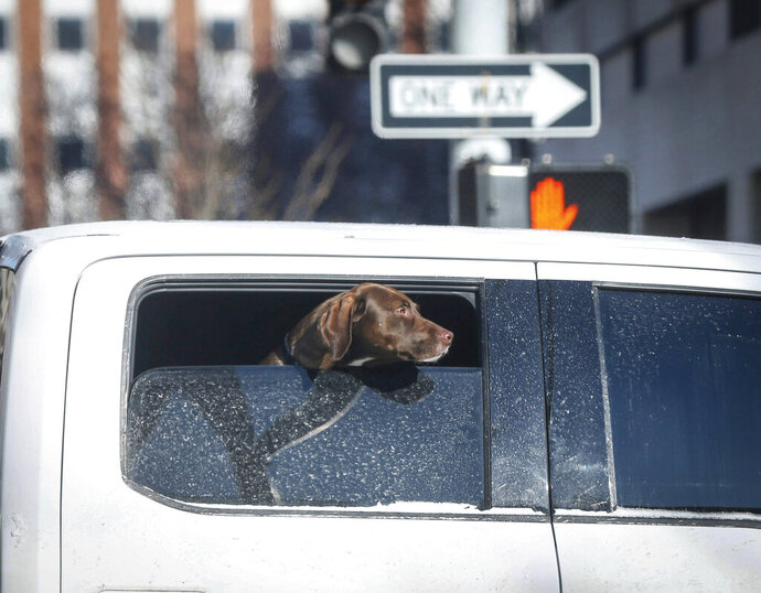 CORRECTS TO BRYON HOULGRAVE INSTEAD OF BRIAN HOULGRAVE A dog watches from a vehicle window on Thursday, Feb. 13, 2020, in Des Moines, Iowa, as temperatures reached sub-zero. The freeze isn't expected to last long, as temperatures in central Iowa will reach the 40s by the weekend. (Bryon Houlgrave/The Des Moines Register via AP)