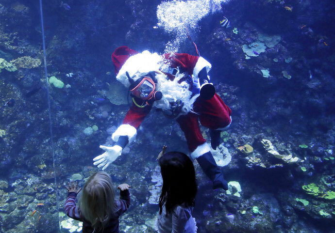 Volunteer diver George Bell, dressed as Santa Claus, waves to children after speaking inside the Philippine Coral Reef tank at The California Academy of Sciences in San Francisco, Thursday, Dec. 13, 2018. The California Academy of Sciences launched its holiday festivities Thursday by having a diver dressed as Santa Claus submerge into a coral reef exhibit while dozens of children watched from behind the glass. (AP Photo/Jeff Chiu)