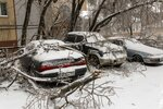 Fallen tree branches on parked cars after an ice storm in Vladivostok, Russia, Friday, Nov. 20, 2020. Thousands of people in Russia's Far East region of Primorye remained without heating or electricity on Wednesday, Nov. 25, 2020 as local authorities and emergency services wrestled with the consequences of an unprecedented ice storm that hit the region last week. (AP Photo/Aleksander Khitrov)