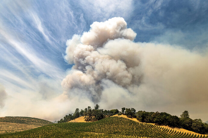 FILE - In this Aug. 18, 2020, file photo, a plume rises over a vineyard in unincorporated Napa County, Calif., as the Hennessey Fire burns. Smoke from the West Coast wildfires has tainted grapes in some of the nation's most celebrated wine regions. The resulting ashy flavor could spell disaster for the 2020 vintage. (AP Photo/Noah Berger, File)