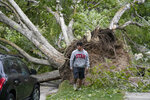 A man walks past a fallen tree Tuesday, Sept. 8, 2020, in Salt Lake City. Hurricane force winds caused widespread damage and power outages throughout northern Utah. (AP Photo/Rick Bowmer)