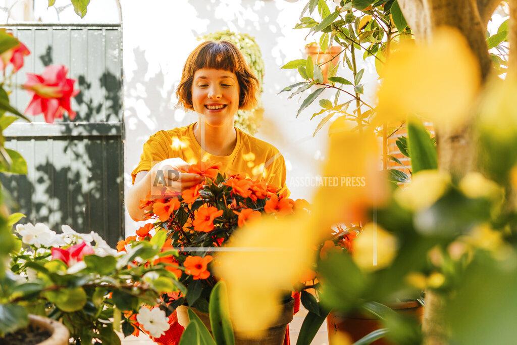 Smiling woman admiring flowers in backyard