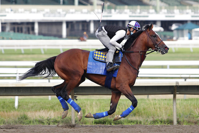 Authentic, exercise rider Ramon Moya Jr. up, gallops at Monmouth Park Racetrack in Oceanport, N.J. on Wednesday morning July 15, 2020. Authentic will compete in Saturday's $1,000,000 Haskell Stakes horse race at Monmouth Park. (Bill Denver/EQUI-PHOTO via AP)