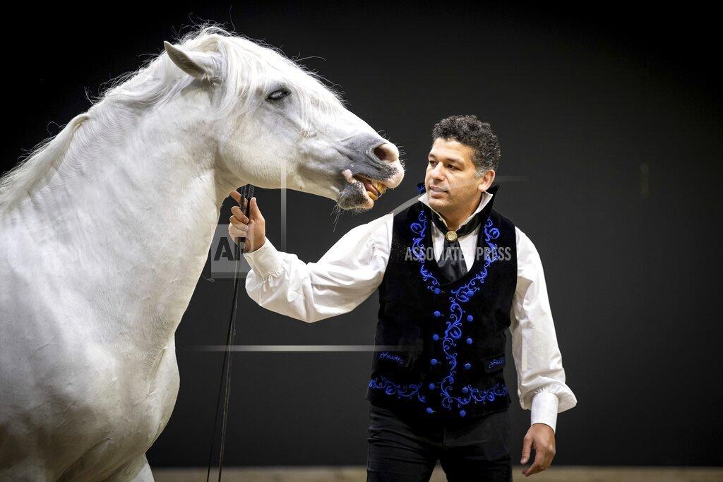 "Fair ""Horse & Hunt"""