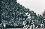 FILE - In this Nov. 23, 1968 file photo, Harvard's Tom Wynne (45), Yale's Cal Hill (3) and Harvard's Pat Conway (34) battle for a Yale pass during a college football game at Harvard Stadium in Cambridge, Mass. Sixty-five members of Harvard's 1968 football team are expected back on campus this weekend for the 50th anniversary of The Game's most memorable edition.  (AP Photo/File)