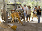 FILE - In this July 27, 2016 file photo Wildlife Waystation staff members return