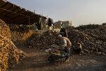 An Afghan man buys firewood in Kabul, Afghanistan, Monday, Sept. 20, 2021. (AP Photo/Bernat Armangue)