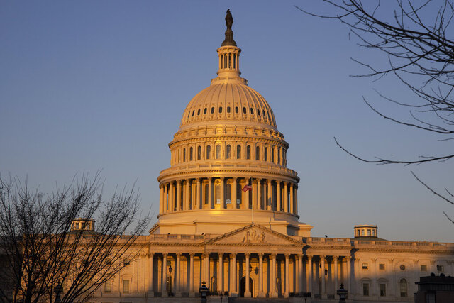 The U.S. Capitol at sunrise on Monday, Jan. 20, 2020, in Washington. A major doctors' organization is calling for sweeping government action to guarantee coverage for all, reduce costs, and improve the basic well-being of Americans.  (AP Photo/Jon Elswick)