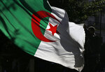 An Algerian demonstrator holds the Algerian national flag as he stage a protest against the government in Algiers, Algeria, Friday, Nov.29, 2019. Thousands of protesters took to the streets of the capital after Friday prayers. (AP Photo/Toufik Doudou)