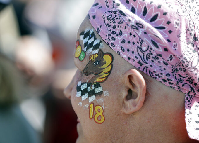 A fan wears face paint for driver Kyle Busch (18) during the NASCAR Series Championship auto race at the Homestead-Miami Speedway, Sunday, Nov. 18, 2018, in Homestead, Fla. (AP Photo/Lynne Sladky)