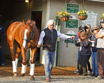 Trainer Bob Baffert, right, leads Justify out of Barn 33 at Churchill Downs the morning after winning the 144th Kentucky Derby in Louisville, Ky., Sunday, May 6, 2018. (AP Photo/Garry Jones)