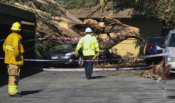 Authorities access the damage after a woman was killed after a large eucalyptus tree toppled and smashed onto a car she was inside of in the driveway of her home in Tustin, Calif. during the heavy Santa Ana winds on Monday, Oct. 15, 2018. Potentially powerful winds combined with dry weather are raising the threat of wildfires in California. (Mindy Schauer /The Orange County Register via AP)