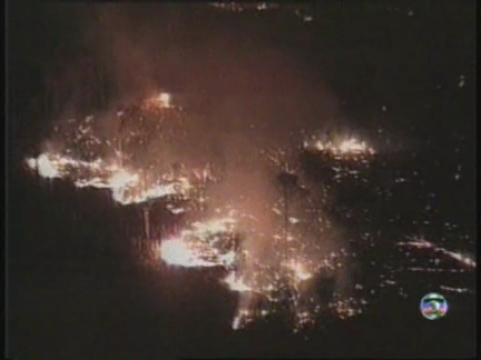 BRAZIL: FIRES RAGE OUT OF CONTROL IN AMAZON AREA