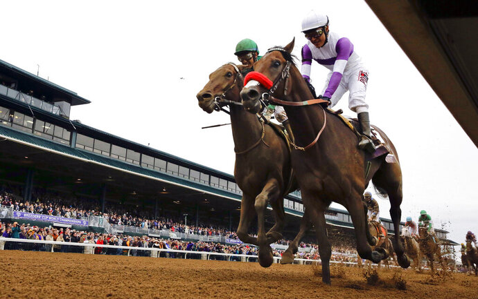 FILE - In this Oct. 31, 2015, file photo, Nyquist, front right, with Mario Gutierrez up, finishes ahead of Swipe, left, with Victor Espinoza up, to win the Breeders' Cup Juvenile horse race at Keeneland race track in Lexington, Ky. The Breeders' Cup in November will be held without spectators, joining the Triple Crown races in having only essential personnel and participants on hand because of the coronavirus pandemic. The world championships are set for Nov. 6-7, 2020, at Keeneland. (AP Photo/Brynn Anderson, File)