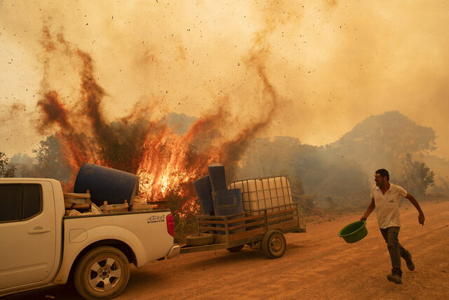 Volunteer Divino Humberto tries to douse the fire along a dirt road off the Trans-Pantanal highway, in the Pantanal wetlands near Pocone, Mato Grosso state, Brazil, Friday, Sept. 11, 2020. Pouring the water had little effect as wind redirected the fire toward a tree, causing it to explode as though it had been soaked with gasoline. (AP Photo/Andre Penner)