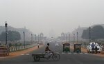 A cyclist paddles his cart as the city envelops in smog in New Delhi, India, Thursday, Nov. 7, 2019. The air quality index stood at 273 on Thursday in the capital after authorities declared a health emergency last weekend when the index crossed 500 — 10 times the level considered healthy by WHO standards. (AP Photo/Manish Swarup)