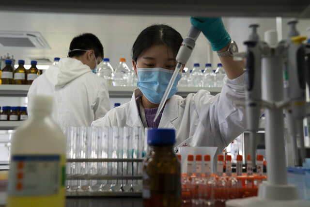 An employee of SinoVac works in a lab at a factory producing its SARS CoV-2 Vaccine for COVID-19 named CoronaVac in Beijing on Thursday, Sept. 24, 2020. SinoVac's CEO says they have injected 90 percent of its employees and family members, or about 3,000 people, and provided tens of thousands of rounds of CoronaVac to the municipal government of Beijing. It's a highly unusual move that raises ethical and safety questions, as companies and governments worldwide race to develop a vaccine that will stop the spread of the new coronavirus. (AP Photo/Ng Han Guan)