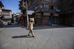 A Kashmiri man walks carrying a box through a closed market in Srinagar, Indian controlled Kashmir, Sunday, Sept. 5, 2021. Authorities Sunday eased some restrictions that had been imposed after the death of top resistance leader Syed Ali Geelani. However, most shops and businesses stayed closed as government forces patrolled roads and streets in the city. (AP Photo/Mukhtar Khan)