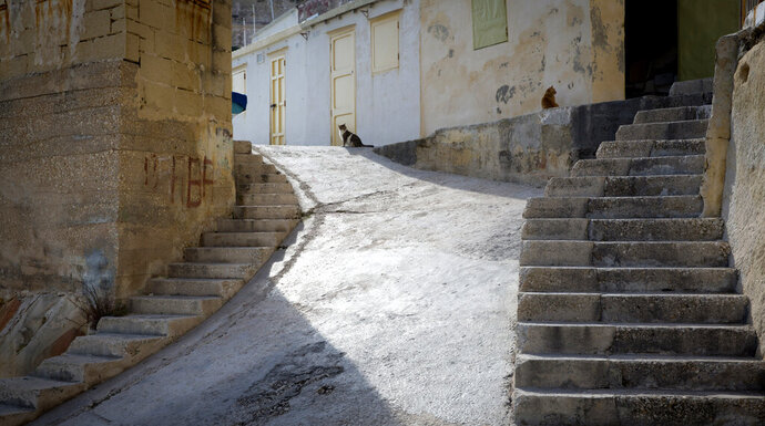 FILE - In this Thursday, Feb. 2, 2017 file photo, two cats sit at the top of the stairway in the middle of a small fisherman's landing in Valletta, Malta. The EU on Thursday, Nov. 28, 2019, said it guarantees the right of domestic cats to roam free, even if they can be a threat to birds. (AP Photo/Virginia Mayo, File)