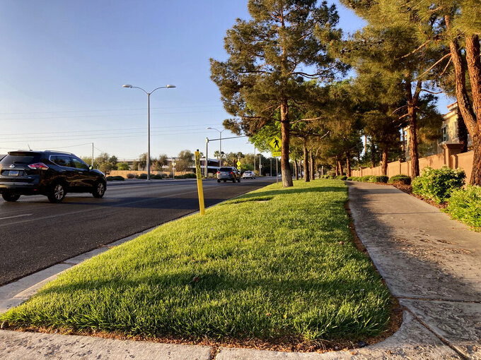 "Traffic passes grassy landscape on Green Valley Parkway on Friday, April 9, 2021, in suburban Henderson, Nev. Las Vegas, a desert city built on a reputation for excess, wants to become a model for restraint with a first-in-the-nation policy limiting water use by banning grass that nobody walks on. Las Vegas area water officials are asking the state Legislature to pass a law banning ""non-functional turf."" (AP Photo/Ken Ritter)"