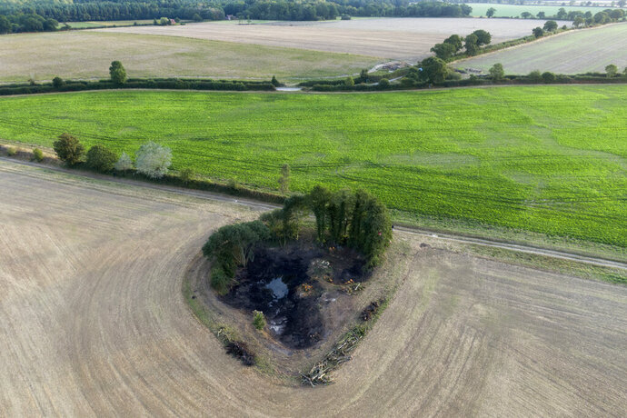 A wetland is surrounded by farmland near Hindolveston, Dereham, eastern England, on Friday, Sept. 13, 2019. Around the world, efforts are being made to reclaim wetlands that have been filled in to plant crops or fill other human needs. (AP Photo/Emilio Morenatti)