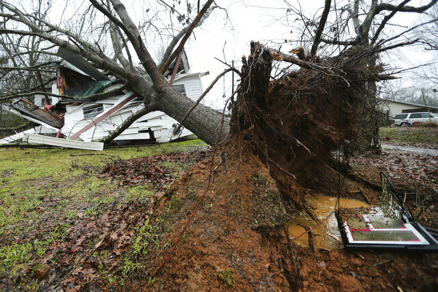A downed tree rests on top of Anthony Dalrymple's home on Community Road in Baldwyn, Miss., after a small tornado moved through the area Saturday morning, Jan. 11, 2020. Dalrymple was in the room that was struck during the time the storm passed through. (Adam Robison/The Northeast Mississippi Daily Journal via AP)