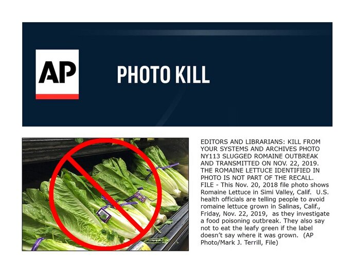 FILE - This Nov. 20, 2018 file photo shows Romaine Lettuce in Simi Valley, Calif.  Health officials are disclosing another E. coli outbreak linked to romaine lettuce from the summer 2019, but say it appears to be over.  The disclosure comes after romaine producers pledged to step up safety measures following a series of outbreaks, including one last year that sickened more than 200 and killed five. Experts say it's not clear why romaine keeps getting tainted. (AP Photo/Mark J. Terrill, File)