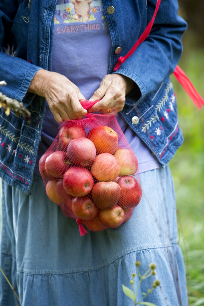 Betty Sue Lowe ties off a netted bag of fallen apples she gathered from under an orchard tree in Boones Mill, Va. on Oct. 10, 2019.  Apples, some of them mushy but others perfectly fine, litter the ground and emit a sweet smell. The orchard is quiet on this gray morning, save for the occasional gentle shake of a branch, followed by the thud of apples hitting the ground. (Stephanie Klein-Davis/The Roanoke Times via AP)