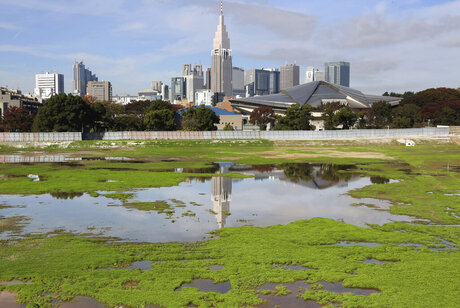 Japan Olympics Tokyo 2020 Cost