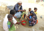 In this Aug. 25, 2018 photo, a man feeds children Halas, a climbing vine of green leaves, in Aslam, Hajjah, Yemen. Yemenis in the isolated pocket in the north have been reduced to eating boiled leaves from a local vine to stave off starvation, with no aid reaching many families who need it most. The situation in Aslam district is a sign of the holes in an international aid system that is already overwhelmed but is the only thing standing between Yemen's people and massive death from starvation amid the country's 3-year civil war. (AP Photo/Hammadi Issa)