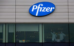 Two workers wave from a window at Pfizer Manufacturing in Puurs, Belgium, on Wednesday, Dec. 2, 2020. British officials authorized a COVID-19 vaccine for emergency use on Wednesday, greenlighting the world's first shot against the virus that's backed by rigorous science and taking a major step toward eventually ending the pandemic. (AP Photo/Virginia Mayo)