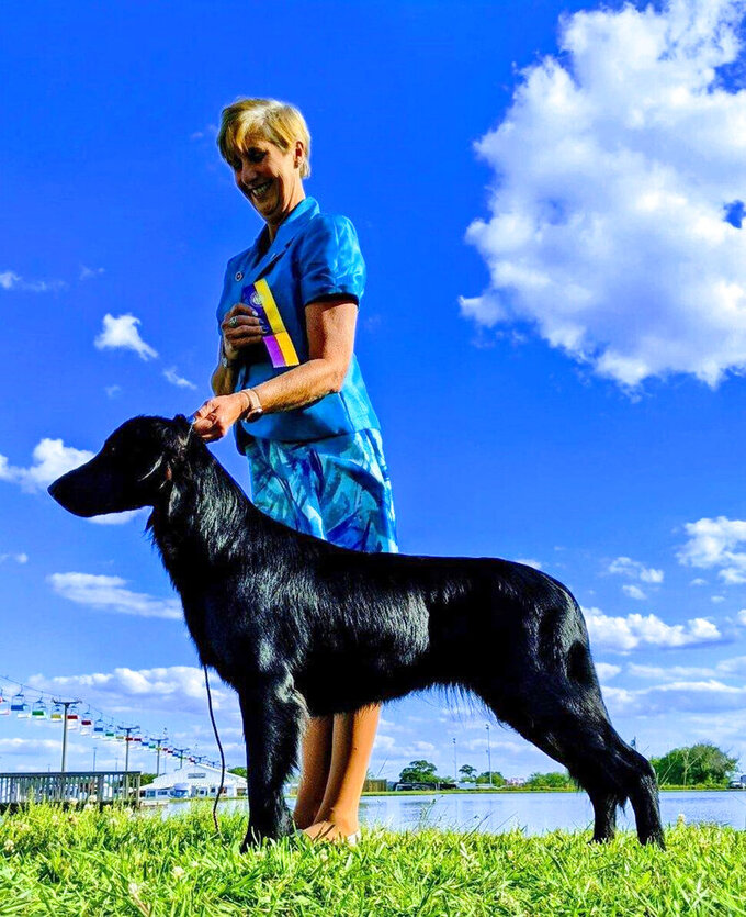 In this image provided by Renee Rosamilla, Tildy, a flat-coated retriever, poses with Rosamilla in Perry, Ga. Tildy is set to compete at the upcoming Westminster Kennel Club dog show, which has undergone many changes this year because of the coronavirus pandemic.  (Courtesy Renee Rosamilia via AP)