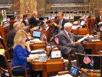 Louisiana state senators read through messages and bills on the Senate floor as the Legislature wraps up its regular session on Monday, June 1, 2020, in Baton Rouge, La. (AP Photo/Melinda Deslatte)