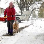 Gianni Green shovels snow off her neighbor's sidewalk along Avenue K in Scottsbluff, Neb., before going to school Thursday, Oct. 10, 2019. Green's golden retriever Sadie accompanied her as she cleared the sidewalk. (Lauren Brant/The Star-Herald via AP)