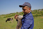 In this picture taken Tuesday, May 21, 2019, Radu Canepa, a local farmer, pets Cristi, a baby goat, in Luncavita, Romania. After working for six years in Italy, Radu Canepa, 34, came back to Romania and started a small farm with 30,000 euros ($33,420) in EU funding, buying some land and five cows. (AP Photo/Vadim Ghirda)