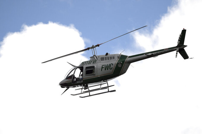 """A Florida Fish and Wildlife Conservation Commission helicopter flies overhead during a search for Brian Laundrie in the Carlton Reserve, Tuesday, Sept. 21, 2021, in Venice, Fla. Laundrie is a person of interest in the disappearance of his girlfriend, Gabrielle """"Gabby"""" Petito. (AP Photo/Phelan M. Ebenhack)"""