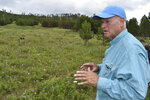 Former U.S. Forest Service Deputy Chief Jim Furnish talks about his concerns with logging in the Black Hills National Forest, on July 14, 2021, near Custer City, S.D. Government scientists say logging on the forest is unsustainable at current levels. (AP Photo/Matthew Brown)