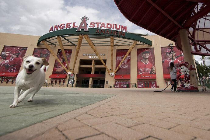 A woman walks her dog by an empty Angel Stadium of Anaheim in Anaheim, Calif., Wednesday, March 25, 2020. There will be empty ballparks on what was supposed to be Major League Baseball's opening day, with the start of the Major League Baseball regular season indefinitely on hold because of the coronavirus pandemic. (AP Photo/Chris Carlson)