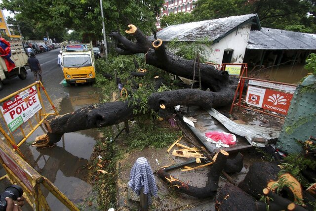 A tree that fell collapsing a compound wall in Chennai, India, Wednesday, Nov.25, 2020. India's southern state of Tamil Nadu is bracing for Cyclone Nivar that is expected to make landfall on Wednesday. The state authorities have issued an alert and asked people living in low-lying and flood-prone areas to move to safer places. (AP Photo/R. Parthibhan)