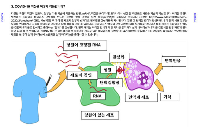 This illustration provided by LaGuardia Community College, shows a diagram in Korean explaining RNA vaccine technology used in the COVID-19 vaccines as a part of the LaGuardia Community College's second online Undergraduate Research Newsletter, which breaks down the science behind the coronavirus vaccinations. The multilingual project was spearheaded by professor Lucia Fuentes, who guided her honors biology students in researching, preparing and publishing information on the coronavirus and the vaccines developed to counter it. (LaGuardia Community College  via AP)