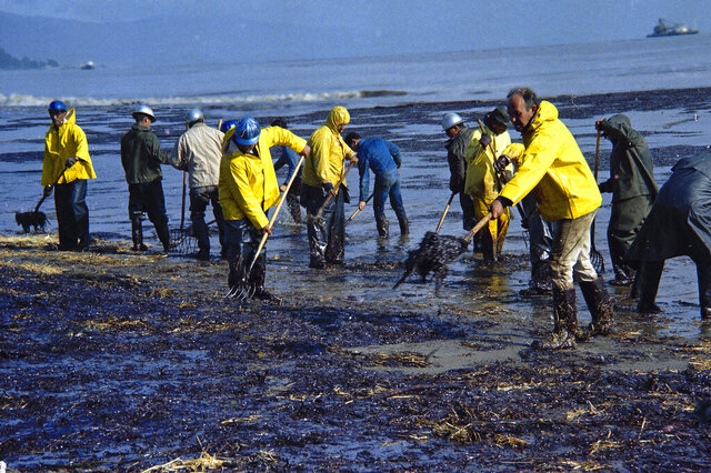FILE- In this Feb. 6, 1969, file photo, state forestry conservation crews gather up oil-soaked straw on a beach in Santa Barbara, Calif. Fifty years after the first Earth Day helped spur activism over air and water pollution and disappearing plants and animals, significant improvements are undeniable but monumental challenges remain. Minority communities suffer disproportionately from ongoing contamination. Deforestation, habitat loss and overfishing have wreaked havoc on global biodiversity. And the existential threat of climate change looms large. (AP Photo/Wally Fong, File)