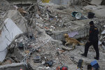 A rescue worker uses Pasha, a sniffer dog, as they search for survivors in the rubble of an eight-story building which collapsed two days earlier in Istanbul, Friday, Feb. 8, 2019. Turkish rescue workers on Friday pulled out a 16-year-old boy from the rubble of an eight-story apartment building in Istanbul two days after it collapsed, Turkey's interior minister Suleyman Soylu said. (AP Photo/Emrah Gurel)