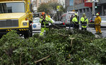 A work crew removes branches from a tree on Mission Street in San Francisco, Thursday, Jan. 17, 2019. Heavy rain, snow and wind pummeled much of California Thursday, causing at least five deaths, leaving thousands without power and forcing wildfire victims threatened by floods to flee their homes. (AP Photo/Jeff Chiu)