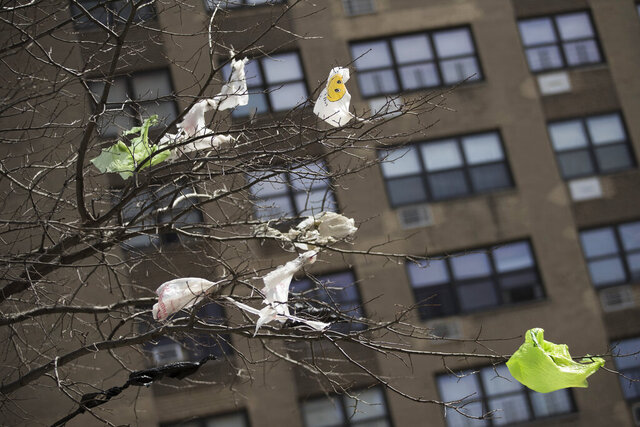 FILE- In this March 27, 2019 file photo, plastic bags are tangled in the branches of a tree in New York City's East Village neighborhood. New York's never-enforced ban on single-use plastic bags has survived a lawsuit lodged by a plastic bag manufacturer and convenience store owners, but a state judge ruled Thursday, Aug. 20, 2020, that state regulators went too far by allowing stores to hand out thicker plastic bags.. (AP Photo/Mary Altaffer, File)