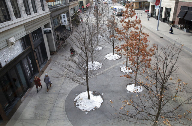 Pedestrians walk past trees planted along Nicollet Mall in downtown Minneapolis on Tuesday, Jan. 7, 2020. Overuse of salt to clear ice from sidewalks could be contributing to the decline of newly planted urban trees. (Christine T. Nguyen/Minnesota Public Radio via AP)
