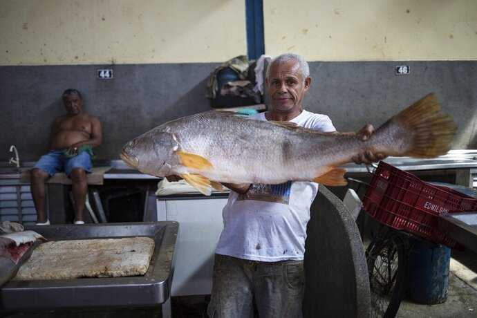 In this Sept. 1, 2019 photo, a vendor poses holding an Amazon fish known as