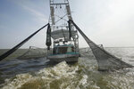 FILE - In an Aug. 16, 2010 file photo, shrimpers haul in their catch in Bastian Bay, near Empire, La., on the first day of shrimping season.It will be months before state officials know whether losses from floods and spillway openings qualify Louisiana as a fisheries disaster. Department of Wildlife and Fisheries officials say floods began around November 2018 and a full 12 months' data is needed to compare to averages for the previous 5 years. The governors of Louisiana, Mississippi and Alabama asked months ago for US Commerce Secretary Wilbur Ross to declare a fisheries disaster, making federal grants available to affected people. (AP Photo/Gerald Herbert, File)