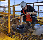 In this Friday, April 12, 2019, photo, a dog is taken care by an oil rig crew after being rescued in the Gulf of Thailand.