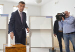 Czech Prime Minister Andrej Babis, left, casts his vote in the European elections in Pruhonice near Prague, Czech Republic, Friday May 24, 2019. (Michaela Rihova/CTK via AP)